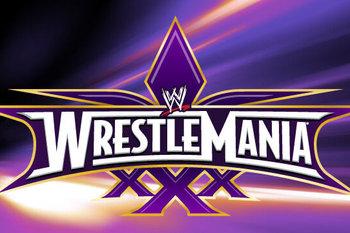 wrestlemania-xxx-poster